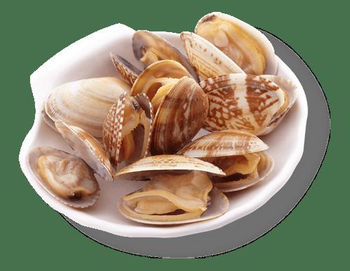 小菜-花蛤