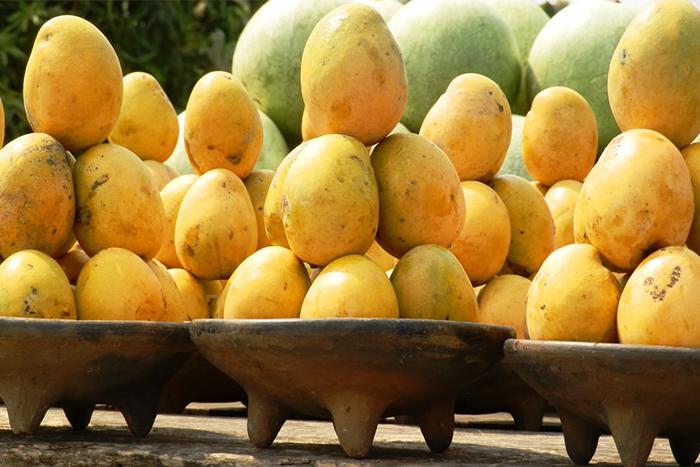 富含酵素的天然食物-芒果