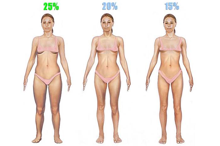 女性體脂肪體態圖