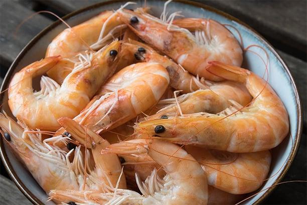 提升免疫力食材蝦子