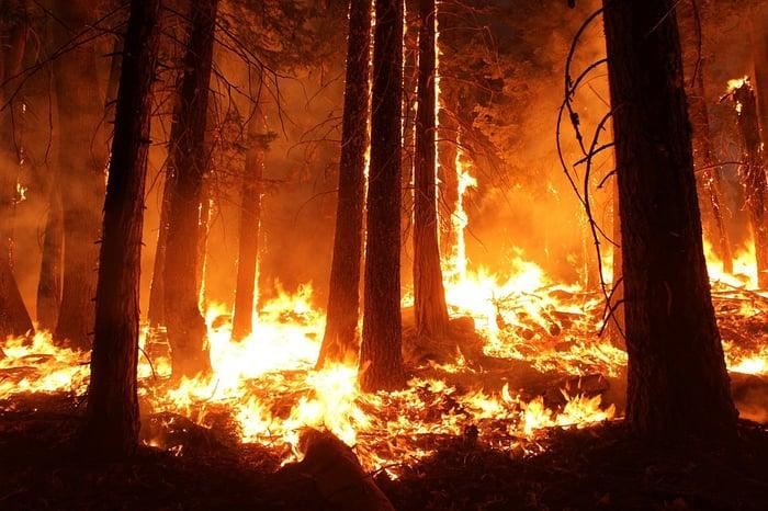 森林火災 二噁英 火山爆發 工業活動 燃燒塑膠
