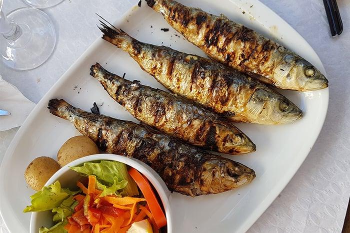 沙丁魚 維生素D 長肌肉 蛋白質 維持骨骼與牙齒健康