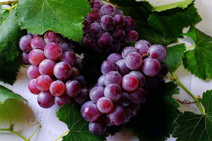 減肥中 不建議吃葡萄