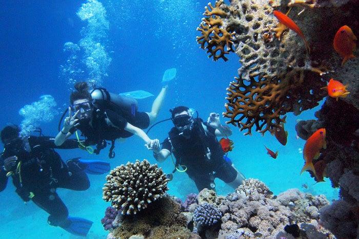 水肺潛水的注意事項-潛伴制度
