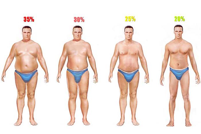 男性體脂肪體態圖