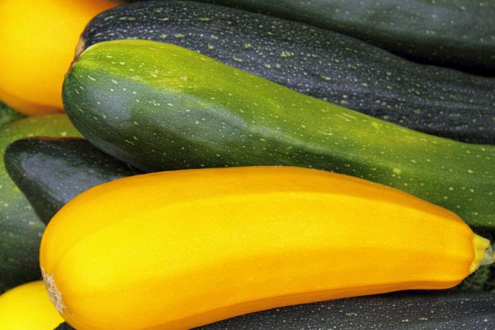 綠櫛瓜、黃櫛瓜