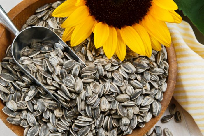 紓壓好食物-葵花籽