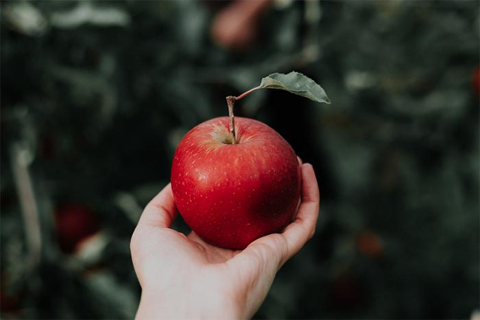 一天一顆蘋果,醫生遠離我?