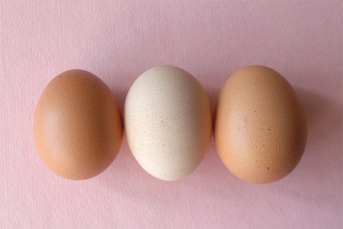 素食者一天應攝取多少蛋白質?