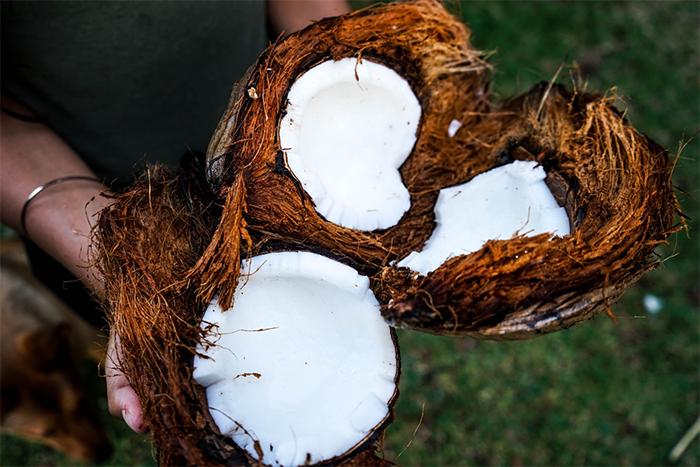 椰子油的飽和脂肪酸的比例,超過80%