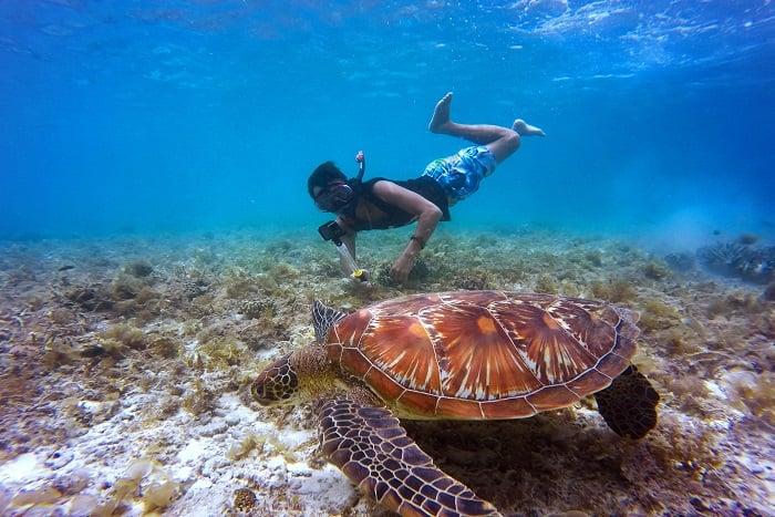 潛水的五大好處 維持健康的生活方式