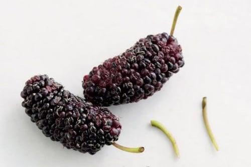 桑葚是漿果的一種,印象中大多是深紅色、黑色,不過也有白色和藍色的版本!深色的桑葚也經常被和黑莓搞混,但仔細看會發現,桑葚形狀較長,中間還有一根貫穿果心的梗,黑莓則是圓滾滾、無梗,想獲得桑葚功效可別買錯囉!