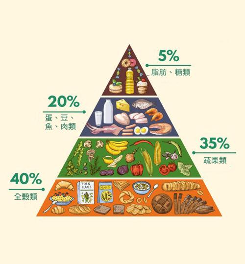 還記得營養金字塔的最尖端嗎?就是脂肪,表示它同樣是身體必需的營養素之一,但不知道什麼時候,脂肪被塑造成一個壞傢伙,讓大家對他避之唯恐不及,這篇要你拋開成見,重新認識脂肪,最後獲得它的健康益處!
