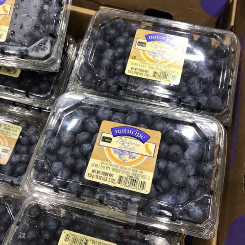 Costco好市多-有機藍莓