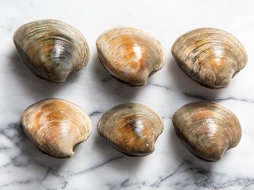 「蛤蜊」,幫你解決蛋白質攝取不足的問題,避免肌肉流失、掉髮、失眠…等減肥期困擾。