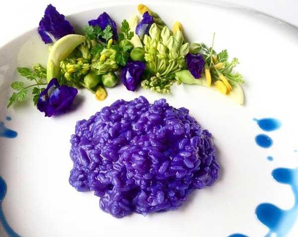 蝶豆花燉飯顏色夢幻