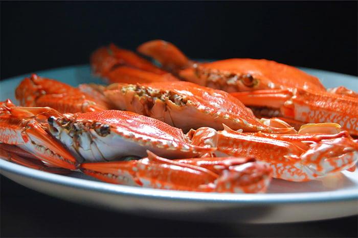 螃蟹跟柿子不能一起吃