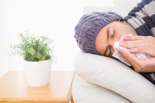 常見過敏原包括:  塵螨 花粉 動物毛皮 黴菌