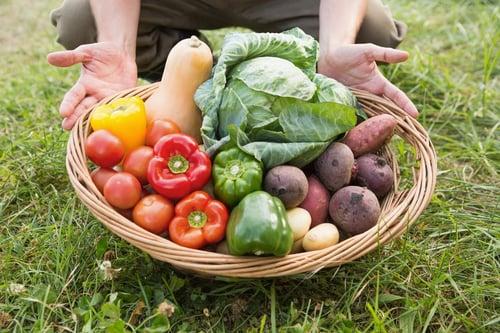 多吃蔬菜、菇類