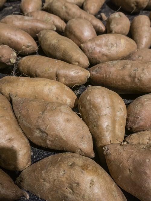 Sweet potatoes (binomial name Ipomoea batatas) on display at a farmer's market (selective focus)-1
