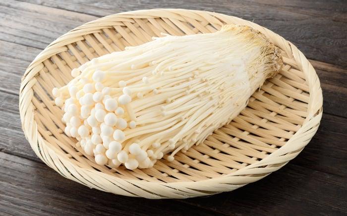 身為「明天見」的金針菇,不好消化,卻在近期刮起減肥潮,包括:「金針菇茶」、「金針菇冰磚」,在日本都有人親身嘗試,看到減肥功效。到底,金針菇有什麼好,受到減肥族群重視?解構金針菇6大功效!