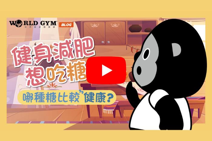 【動畫】健身減脂想吃糖?蜂蜜、楓糖、代糖、蔗糖、果糖哪個比較健康?