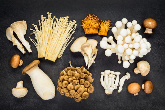 高纖.低熱量.抗癌.降血壓 「菇菇上菜」增強免疫力