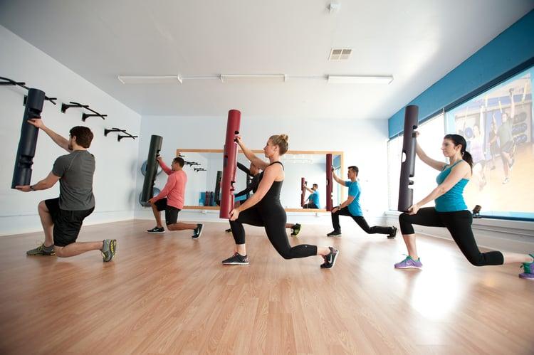 ViPR的全名為Vitality, Performance, Reconditioning,這三個英文意思是活力、表現、重建,最早是用在英國軍方的訓練器材,結合啞鈴、槓鈴、壺鈴與平衡球及健身球…等健身器材的特性所設計出來的。而最大的特點,是全方位、3D功能性訓練,能在身體3D活動面的各個角度都訓練到,ViPR訓練的動作相當多樣化,且還能訓練柔軟度、平衡感與肌肉線條,更能有效燃燒脂肪,有顯著的減肥效果。